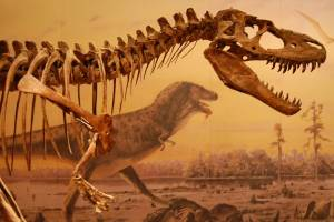 19 - Dinosaur