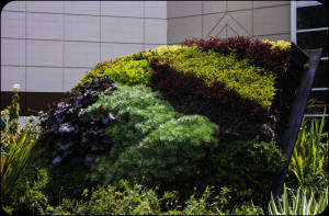 1 AntoinetteLebrun-garden Decor