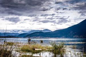 3 Pic - Diane Belyk - 1 - River\'s Edge