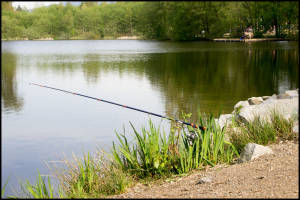 46 - Blue Fishing Rod